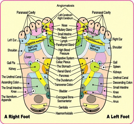 A reflexology foot chart that helps explains how detox foot pads actually work
